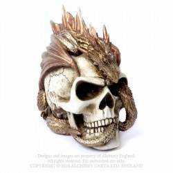 Alchemy Gothic V72 Dragon Keeper's Skull