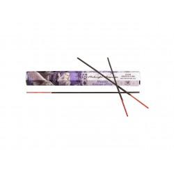 'Midnight Messenger' Incense Sticks by Anne Stokes - Vanilla (20 sticks)
