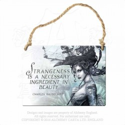 Alchemy Gothic AG-ALHS14 Strangeness is a necessary ingredient... Mini Metal Sign