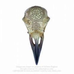 Alchemy Gothic V67 Omega Raven Skull