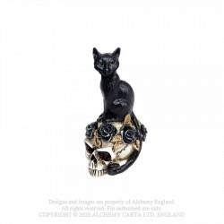 Alchemy Gothic VM3 Cat/Skull: Miniature resin ornament