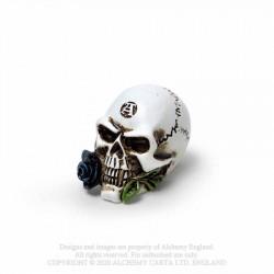 Alchemy Gothic VM6 Alchemist Skull: Miniature resin ornament