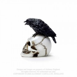 Alchemy Gothic VM7 Raven Skull: Miniature resin ornament