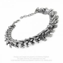 Alchemy Gothic A29 Vertebrae unisex bracelet