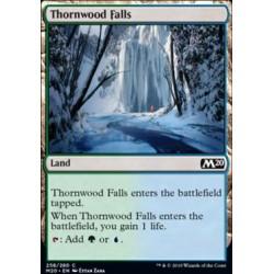 MTG Single - Core Set 2020 - Thornwood Falls
